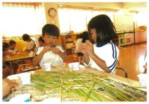 きりん組稲刈り2