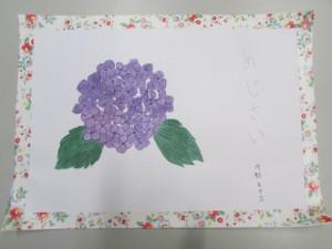 IMG_2485